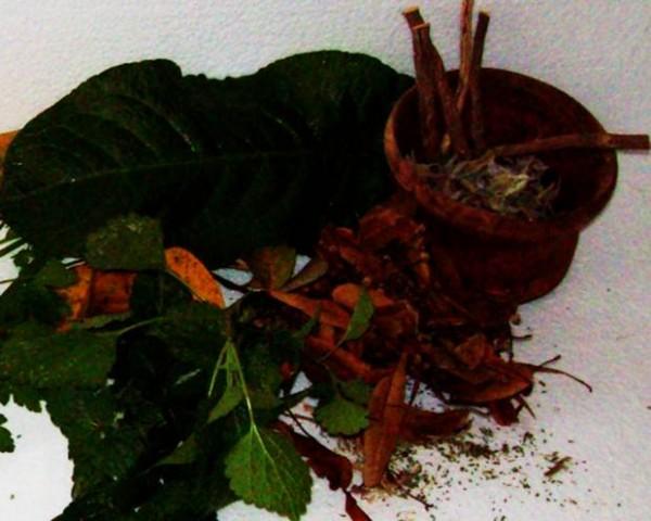 şifalı-bitkiler
