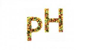 alkali-diyeti-nasıl-yapılır