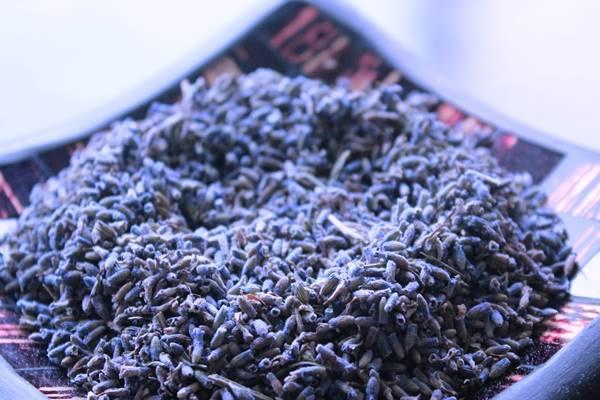 lavanta-çayı-nasıl-yapılır