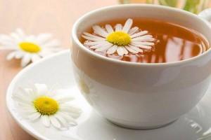 papatya-çayı
