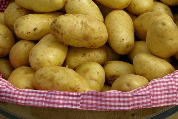 patates-diyeti-yapanlar