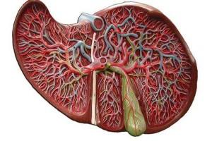 Karaciğer Büyümesi Neden Olur