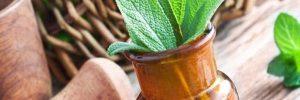 Şifalı Bitkilerle Zayıflama