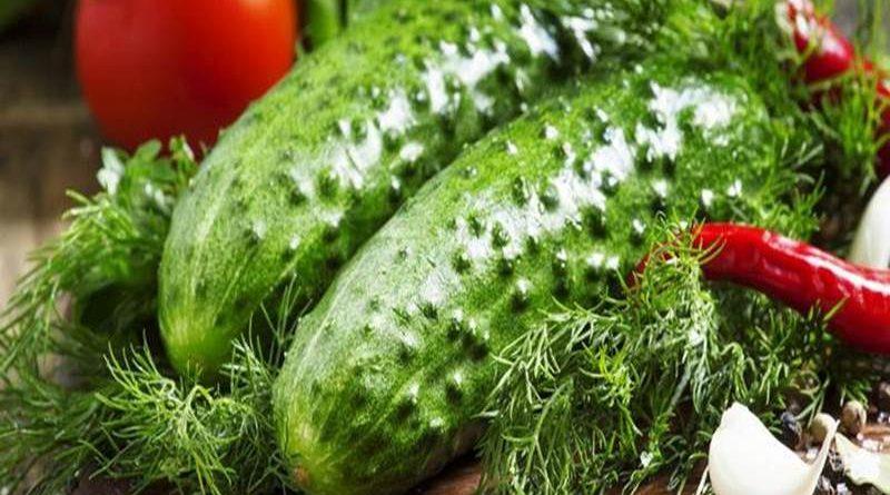 Salatalık Diyeti